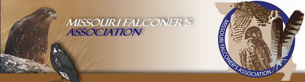 DIY 434Mhz Antenna – Missouri Falconers Association